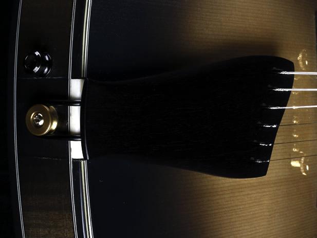 Champagner Smoke thinline Modell Endpin und Saitenhalter
