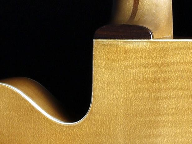 Jazzie die Erste Halsgelenk Detail