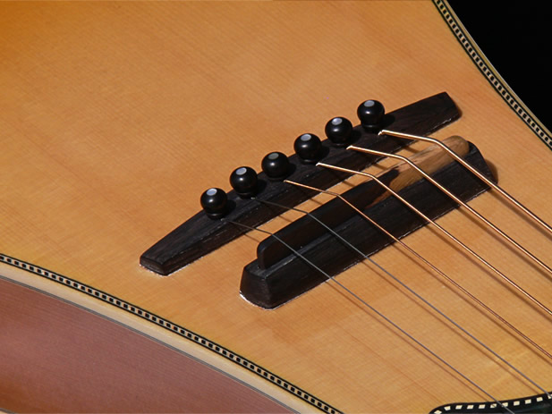 Traveller Slide Edition string bridge