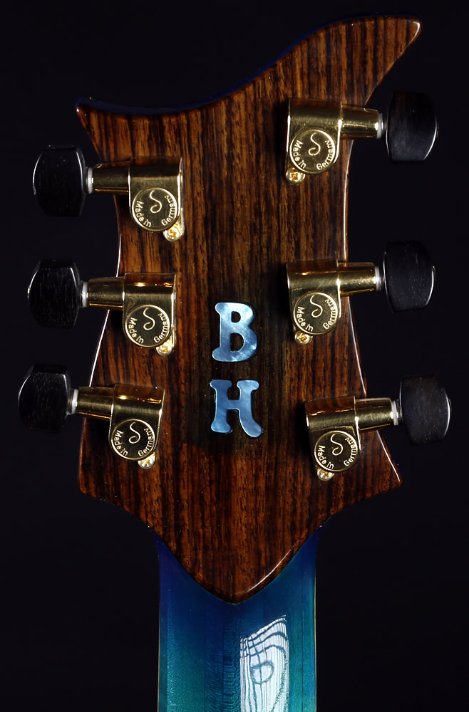 The Living Sea model headstock rear view