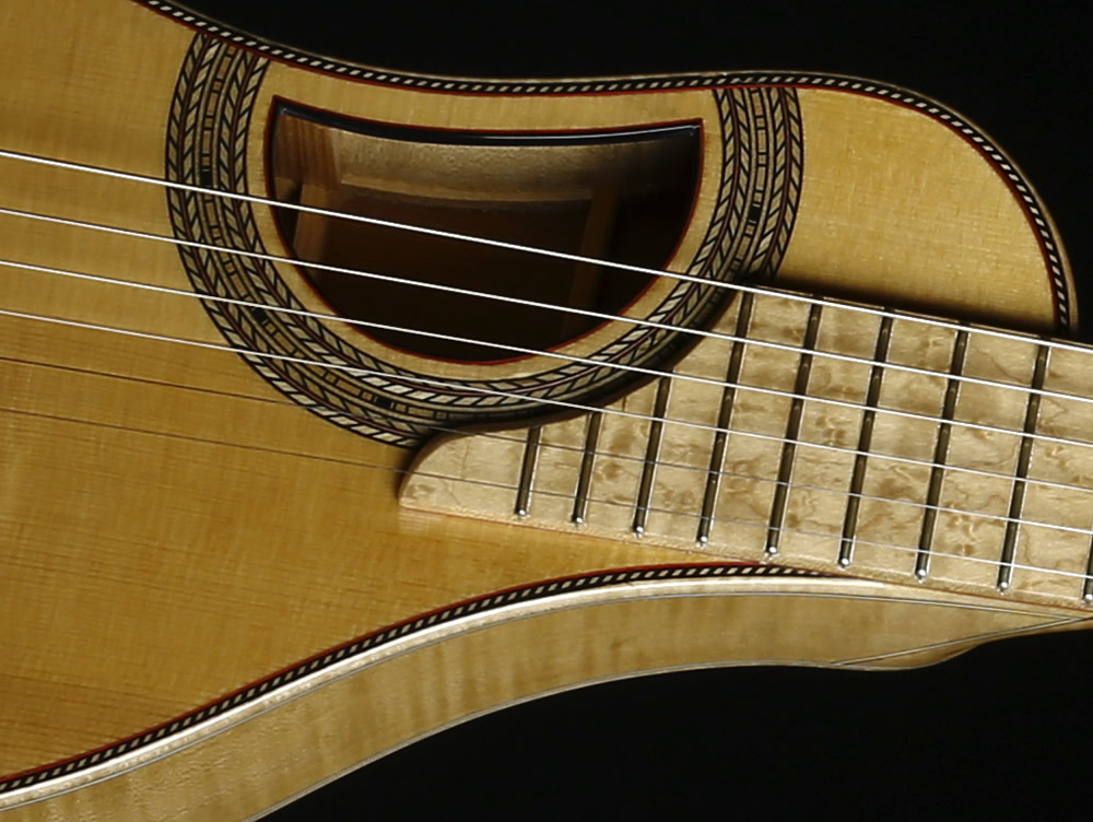 Traveller Deluxe model soundhole