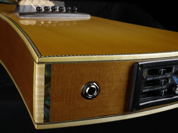 Traveller Standard Edition preamp and sides