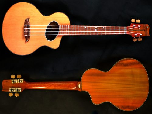Stock Model Acoustic Tenor Ukulele Front and Back View Image