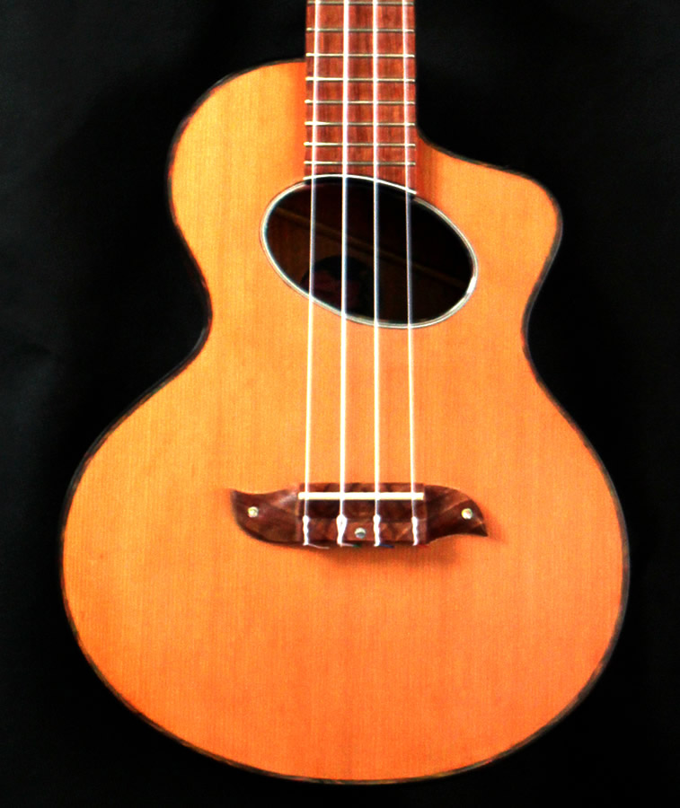 Stock Tenor Ukulele Main Gallery Image